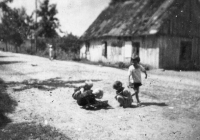 b_witaczynska_papier_luz_107_1944 (garwolin.org)